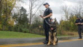 04302018_Matt_mta_police_dog_11_staff.00