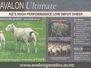 Avalon Ultimate Ad
