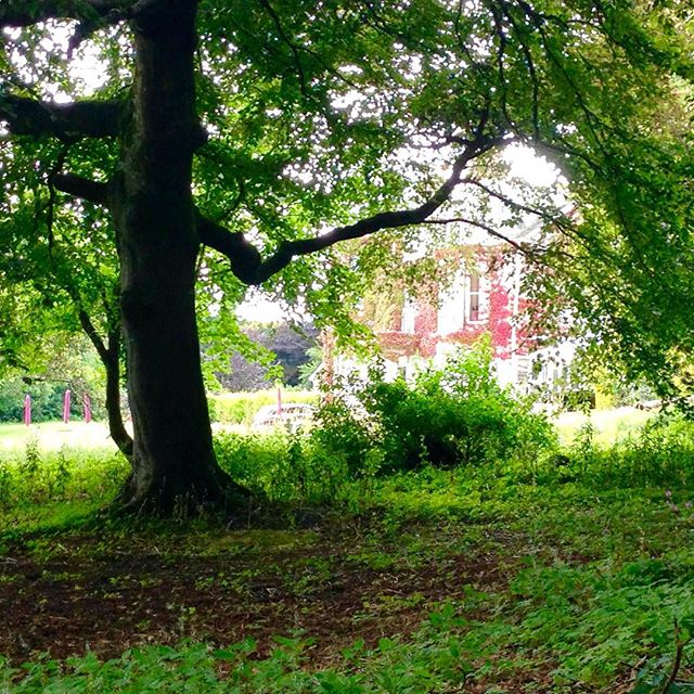 A walk and a glimpse of Tredethy House in high summer
