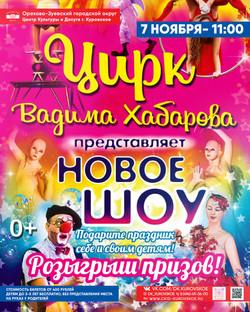 цирк 7 ноября