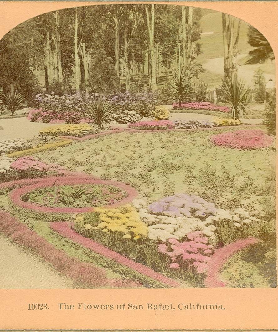 The flowers of San Rafael tinted 1895