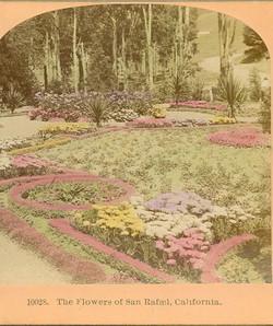 The flowers of San Rafael tinted 1895