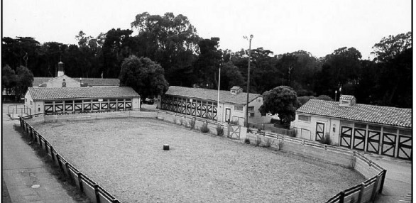 Golden Gate Stables