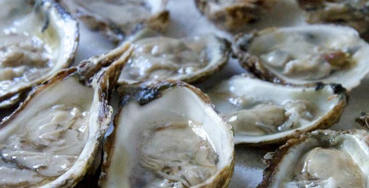 Wellfleet Oysters (1 dozen) (Massachusetts)