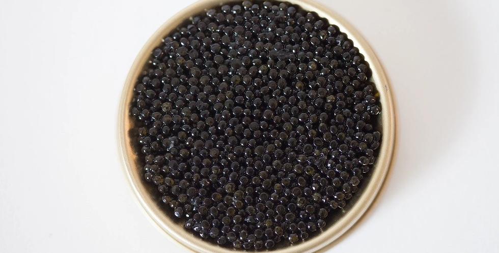 Ossetra Caviar, 100% Russian, 1 oz.