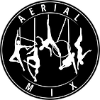 13.AERIAL MIX (0000).png
