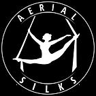 01.AERIAL SILKS (0000).png