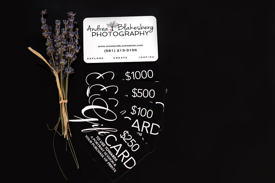 Andrea Blakesberg Photography offers gift cards for sessions and products. Always have the perfect gift to give a friend, colleague, or that someone special in your life!