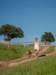 The Texas Ponderosa retreat site