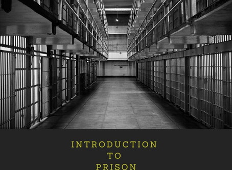 INTRODUCTION TO PRISON