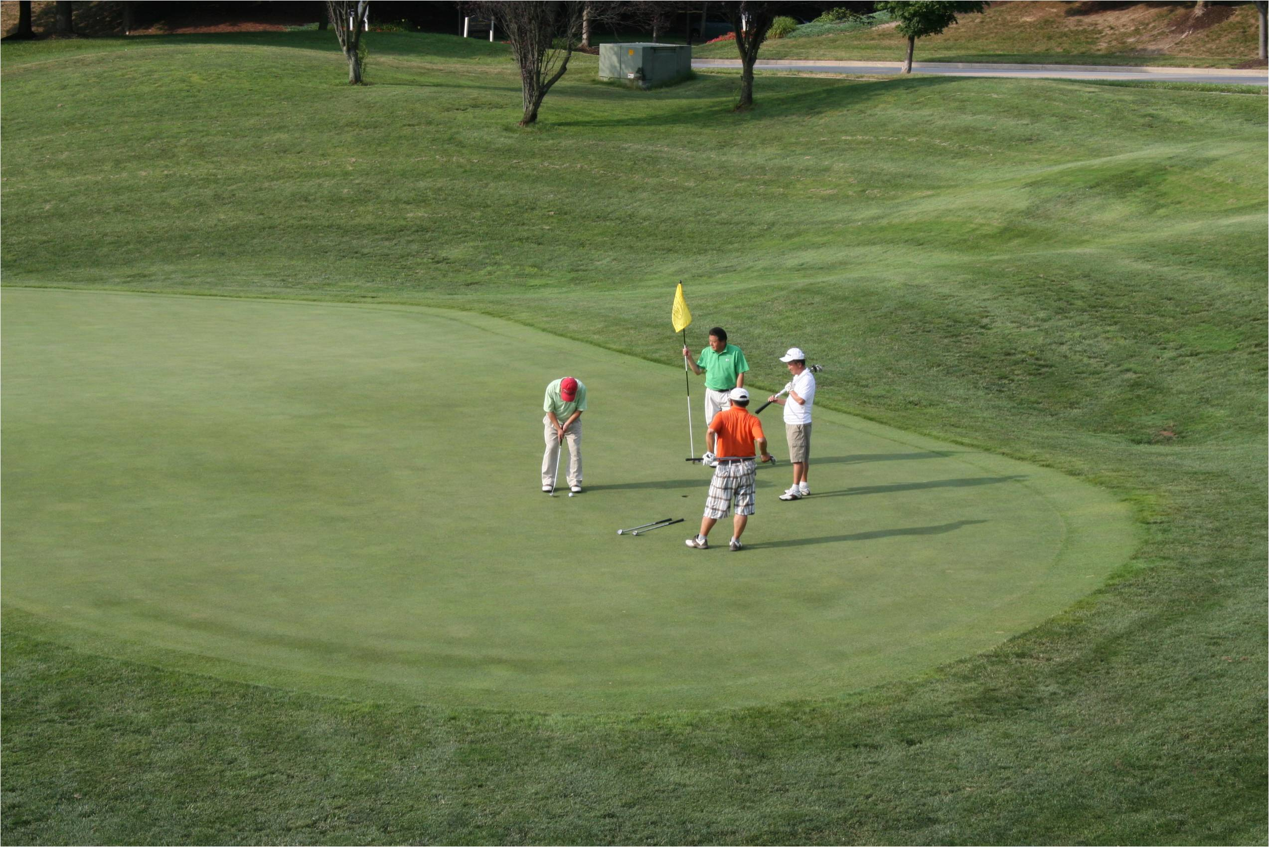 골프2.jpg