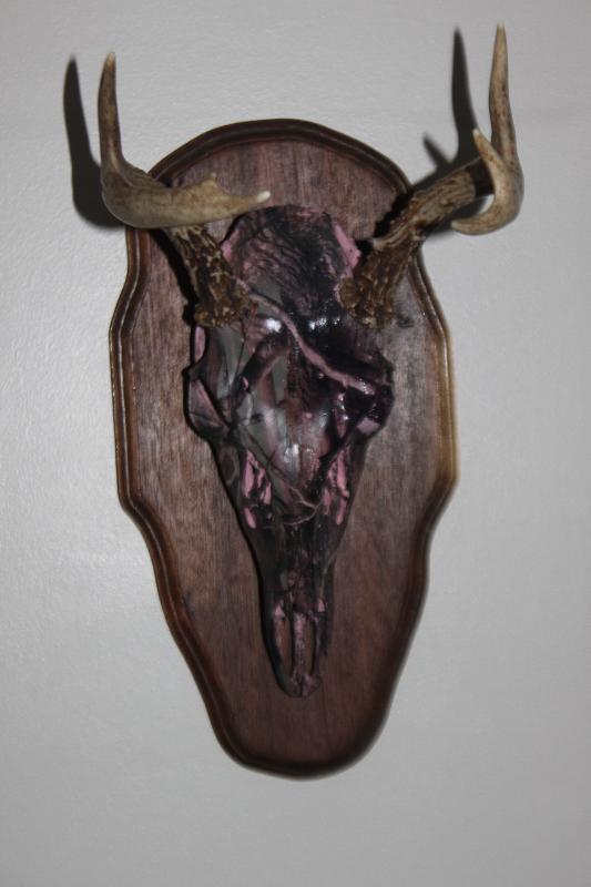 Amara's 2013 Buck