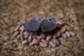 Cacao beans - it makes our amazing chocolate