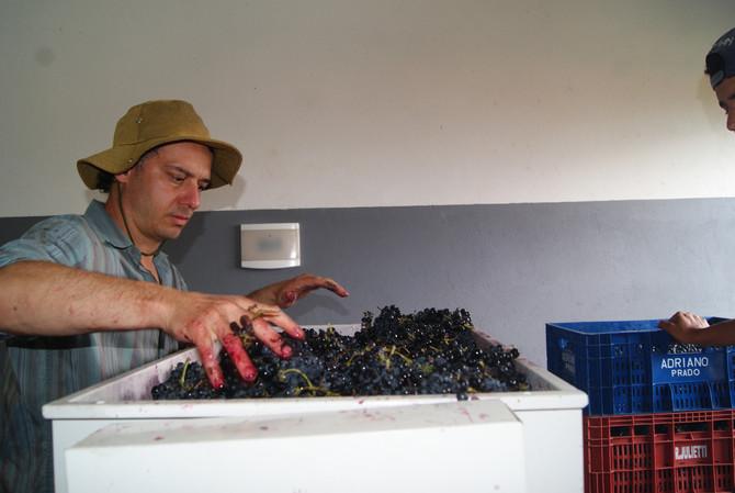 Aos amantes de um bom vinho!!!!!! Super oportunidade de conhecer mais sobre o liquido dos Deuses!!!