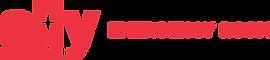 Ally-Logo Horizontal-PMS032.png