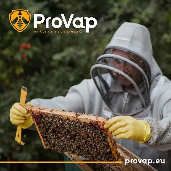 provap-2.jpg