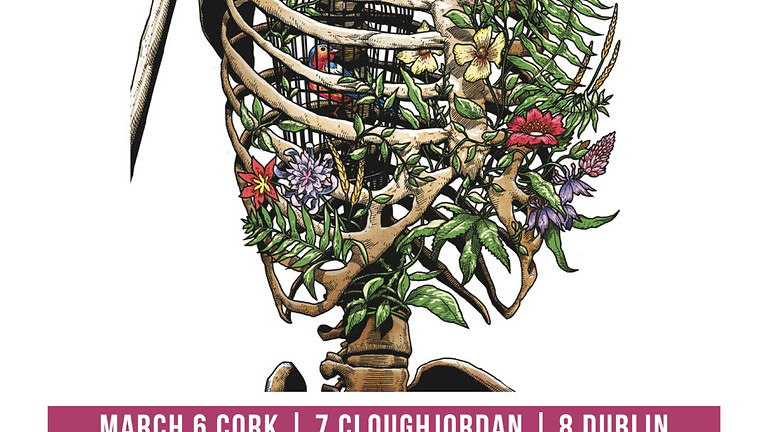 Anarchism & care tour (Ireland 2020)