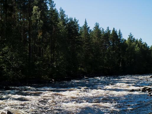 Sandqvist-Voxnan17.jpg