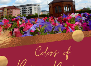 Colors of Baia Mare
