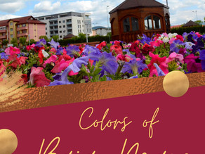 Colors of Baia Mare