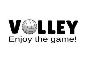 #365volley facts - November