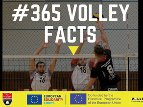 #365volley facts