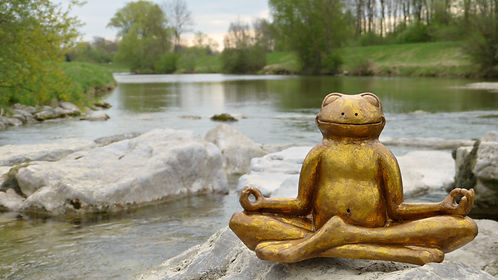 A Frog Statue by SilviaRita.jpg
