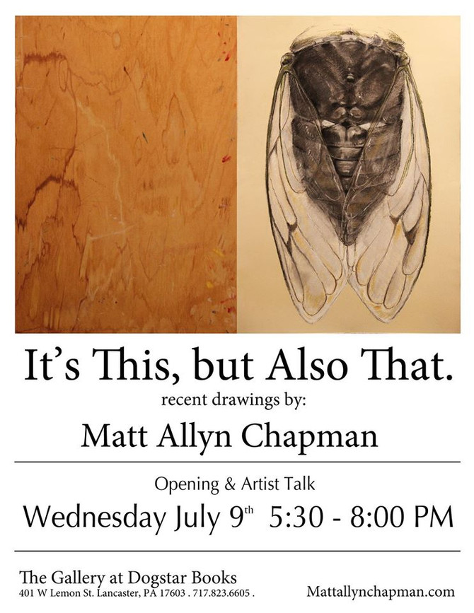 """It's This, but Also That."" solo show July- August"