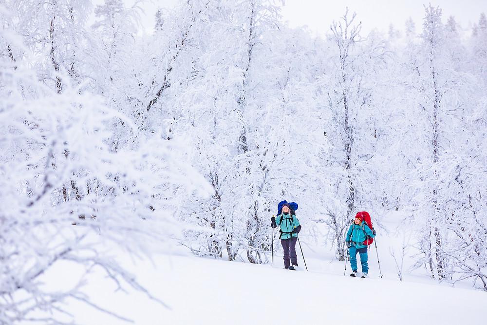 Sliding snowshoeing with Skinbased™ skis