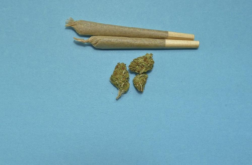 cbd blüten mit filter rauchen, cbd blüten rauchen, cbd blüten mit filter, cbd blüten