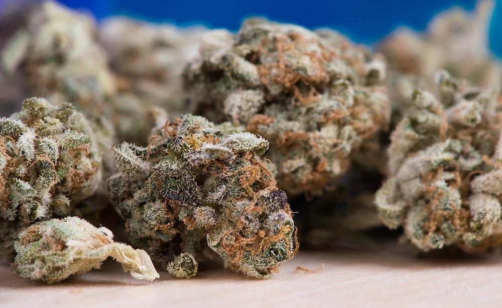 hanf produkte cbd cannabis, cbd produkte günstig, cbd hanfprodukte kaufen günstig, cbd hanf produkte günstig kaufen, cbd hanf, cbd hanf produkte, cbd hanfprodukte