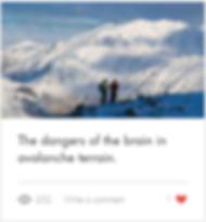 Dangers of the brain in avalanche terrai