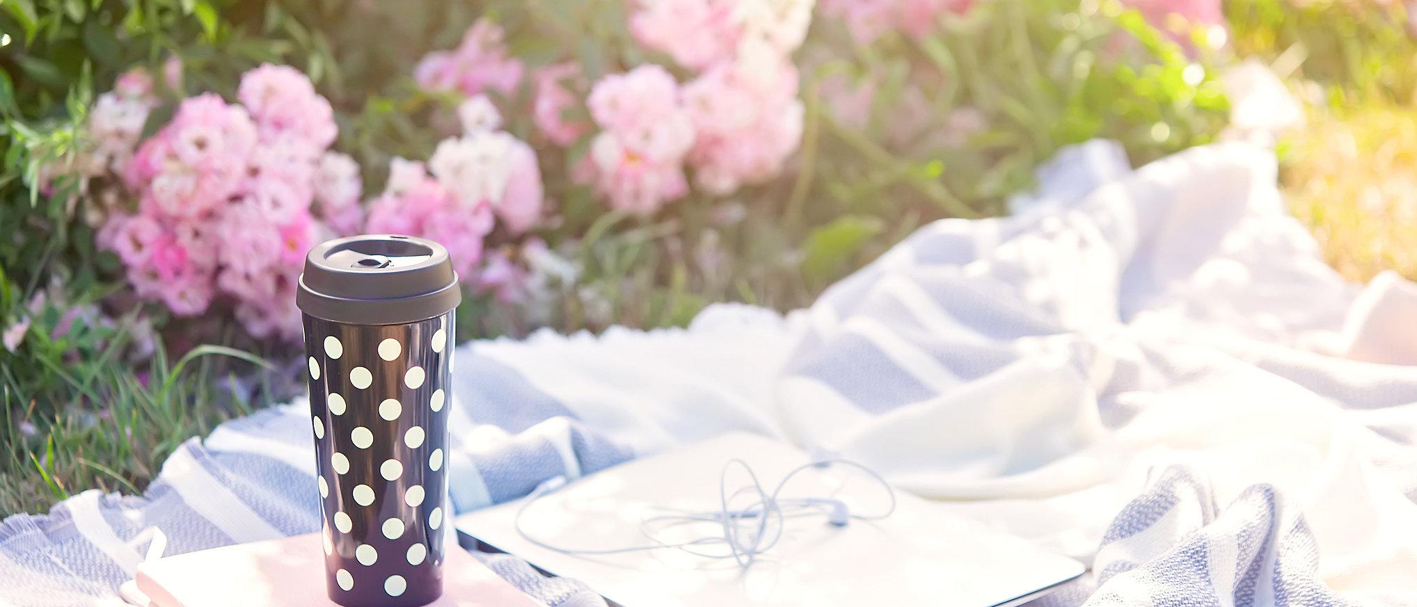 summer picnic.jpg