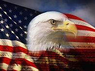 bald-eagle-head-and-american-flag_u-l-pz