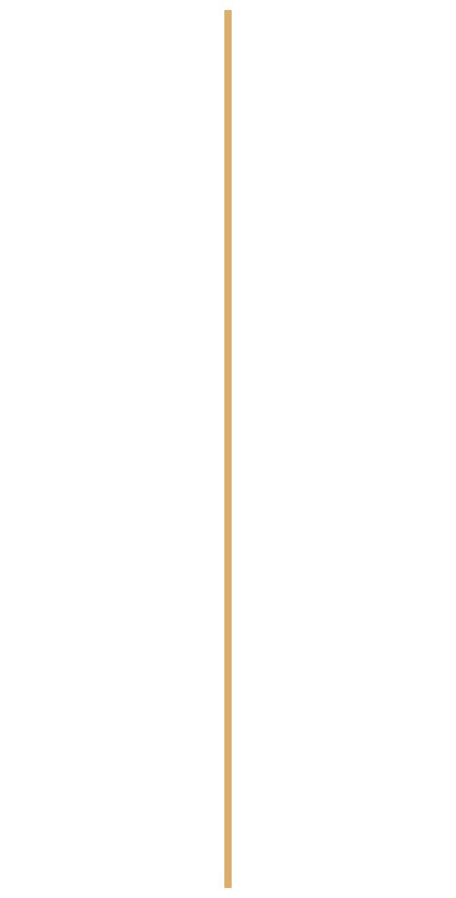vertical-divider-png-4.png