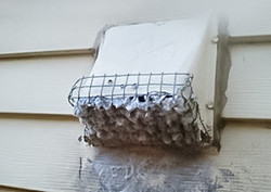 Green_Valley_Pest_Control_Dryer_Vent_Cleaning--4