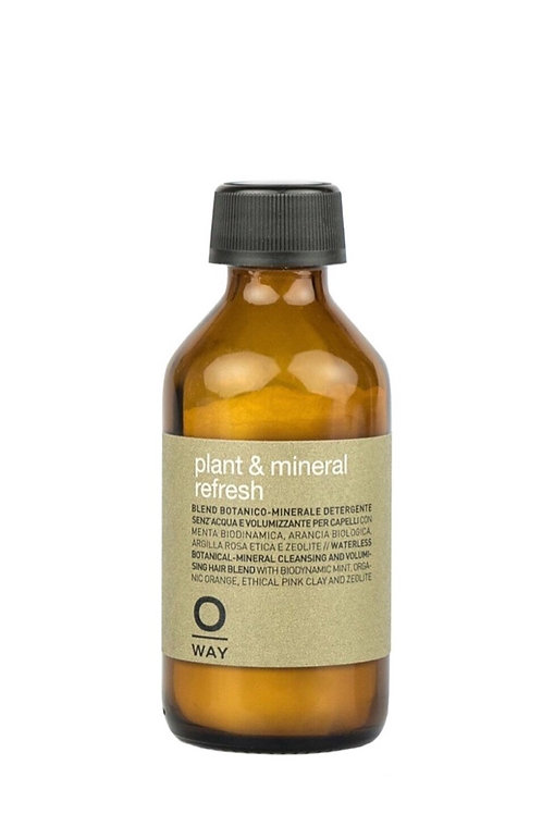 Plant & mineral refresh, dry shampoo.