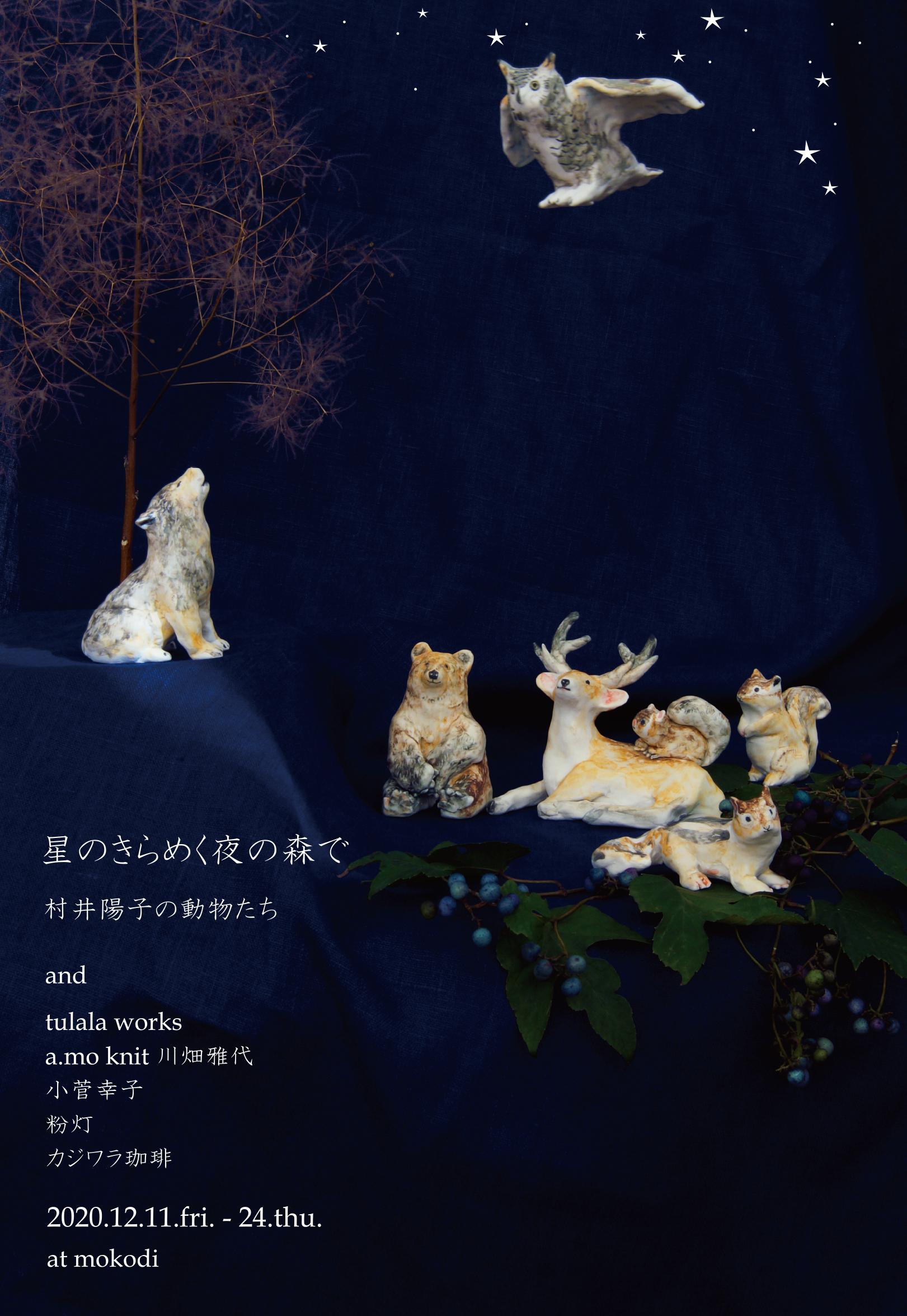 星のきらめく夜の森で ~村井陽子の動物たち~ 2020.12.11~