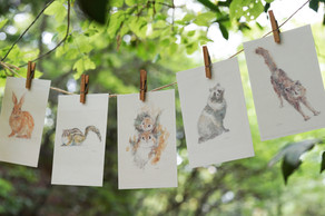 村井陽子さんの描く『森の動物』たちがとっても素敵だったので、ポストカードセットとして皆様にご紹介いたします。