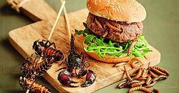 Hmyz na talíři - brouk na talíři