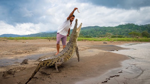 Už jste tahali krokodýla za ocas?