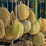 green-and-brown-round-fruits-3888735.jpg