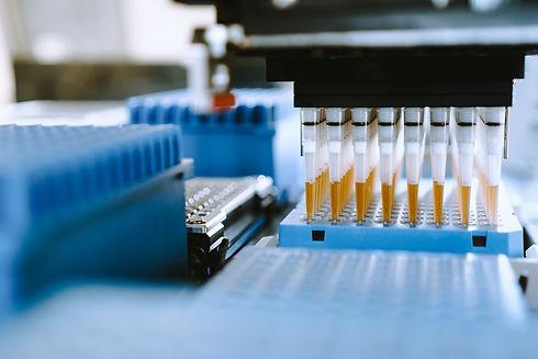 PAIA-Biotech-Service-Phase.jpg