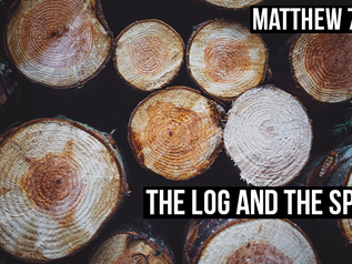 The Log and the Speck