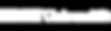 ebs-universitaet-logo-weiss-47a826d5ba95