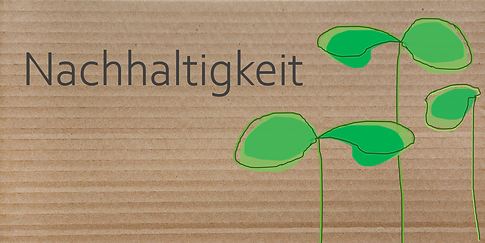 Folie15 Box Nachhaltigkeit.PNG