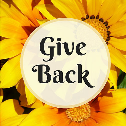 Give-Backsunflowers.png