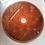 """Thumbnail: J Roviralta Borrell  """"Bhagavad Gita. El canto del señor"""" (Libro + CD)"""