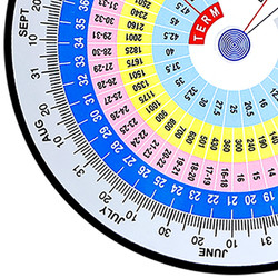 Bluemark Promotions Wheel Chart