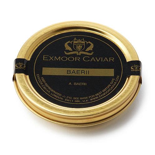 Exmoor Caviar - Baerii, 30g